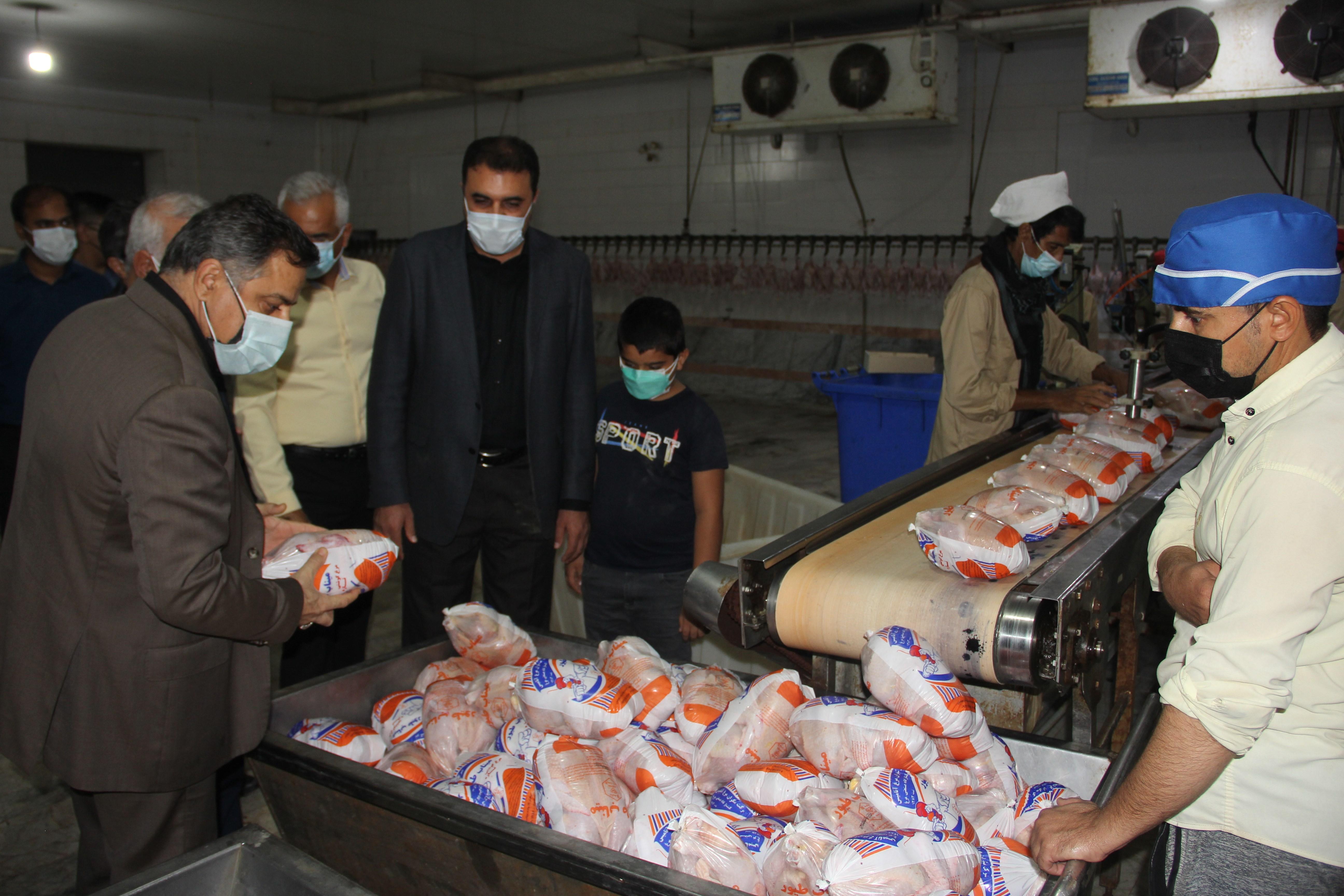 نظارت ویژه در توزیع مرغ گرم در استان
